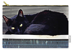 Cat Conditioner Carry-all Pouch