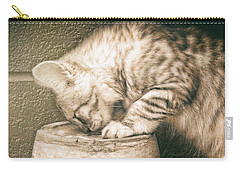 Cat Curiosity... Carry-all Pouch