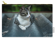 Cat In The Cradle Carry-all Pouch