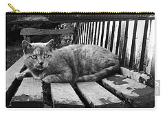 Cat On A Seat Carry-all Pouch