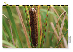 Carry-all Pouch featuring the photograph Cat Tail by Paul Freidlund