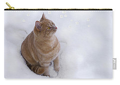 Carry-all Pouch featuring the photograph Cat With Snowflakes by Jacqi Elmslie