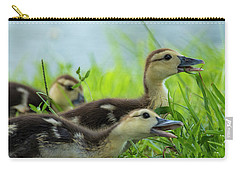 Catching Bugs Carry-all Pouch