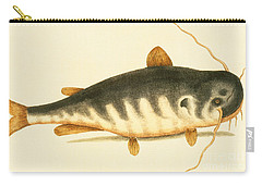 Catfish Carry-all Pouch by Mark Catesby