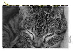 Catnap Carry-all Pouch