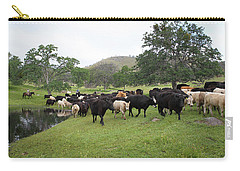 Cattle Carry-all Pouch by Diane Bohna