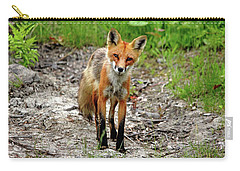 Carry-all Pouch featuring the photograph Cautious But Curious Red Fox Portrait by Debbie Oppermann