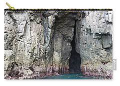 Cave Entrance Carry-all Pouch
