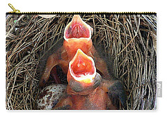 Cavernous Cardinals Carry-all Pouch
