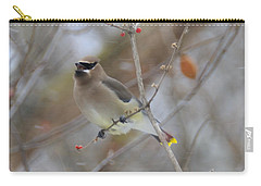Cedar Wax Wing 2 Carry-all Pouch