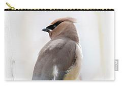 Cedar Wax Wing Carry-all Pouch by Jim Fillpot