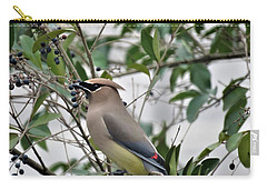 Cedar Waxwing 3 Carry-all Pouch