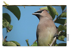Cedar Waxwing At Rest Carry-all Pouch