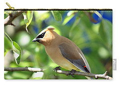Cedar Waxwing Curiosity Carry-all Pouch