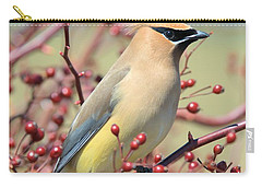 Carry-all Pouch featuring the photograph Cedar Waxwing by Debbie Stahre