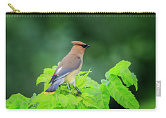 Carry-all Pouch featuring the photograph Cedar Waxwing by Gary Hall
