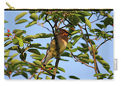 Cedar Waxwing Carry-all Pouch by Mark A Brown