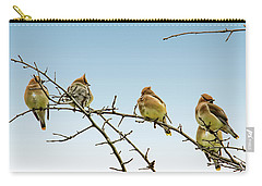 Cedar Waxwings Carry-all Pouch by Geraldine Scull