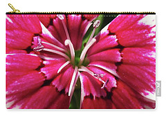 Center Of A Sweet William Carry-all Pouch by Mary Ellen Frazee