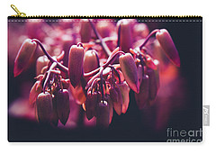 Carry-all Pouch featuring the photograph Chandelier Plant Kalanchoe - A Solitary Morning by Sharon Mau