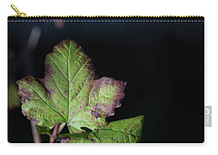 Carry-all Pouch featuring the photograph  Changing Color  by Jingjits Photography