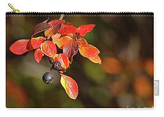 Carry-all Pouch featuring the photograph Changing Season by Ann E Robson