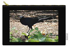 Charleston Wildlife. Black Bird Carry-all Pouch