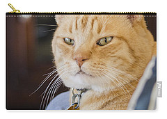 Charlie Cat Carry-all Pouch by Allen Sheffield
