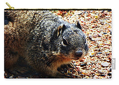 Charlie Carry-all Pouch by Joseph Frank Baraba