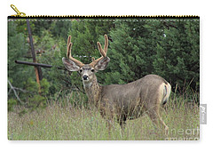 Chasing Velvet Antlers 3 Carry-all Pouch by Natalie Ortiz