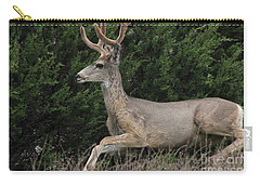 Chasing Velvet Antlers 5 Carry-all Pouch by Natalie Ortiz