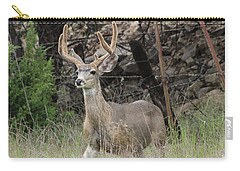 Chasing Velvet Antlers 6 Carry-all Pouch by Natalie Ortiz