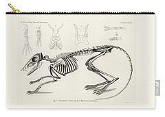 Checkered Elephant Shrew Skeleton Carry-all Pouch