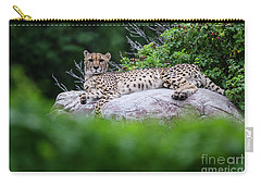 Cheetah Rests On A Rock Carry-all Pouch