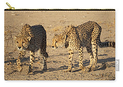Cheetahs Carry-all Pouch