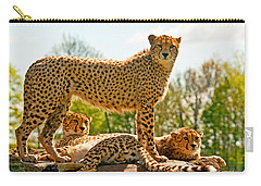 Cheetahs Three Carry-all Pouch