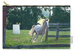 Carry-all Pouch featuring the photograph Chester On The Run by Donald C Morgan