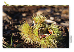 Chestnut Carry-all Pouch by Helga Novelli