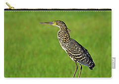 Chevron Carry-all Pouch by Tony Beck