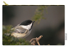 Carry-all Pouch featuring the photograph Chickadee In The Shadows by Susan Capuano