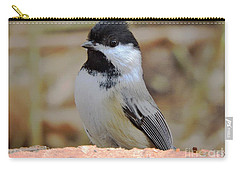 Chickadee's Winter Reverie Carry-all Pouch