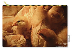 Carry-all Pouch featuring the photograph Chicks by Mary Machare