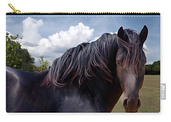 Chief - Windy Portrait Series 3 - Digitalart Carry-all Pouch
