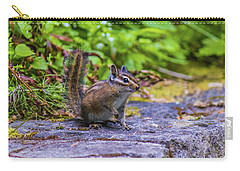Carry-all Pouch featuring the photograph Chipmunk by Jonny D