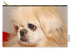 Carry-all Pouch featuring the photograph Chipper by Debbie Stahre