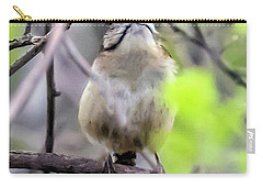 Carolina Wren Displaying Neck Ring Carry-all Pouch
