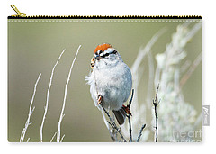 Carry-all Pouch featuring the photograph Chipping Sparrow by Mike Dawson