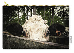Carry-all Pouch featuring the photograph Chocolate Chip Saying Hello by T Brian Jones