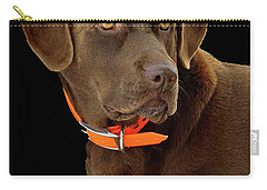 Chocolate Lab Carry-all Pouch