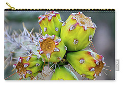 Carry-all Pouch featuring the photograph Cholla Fruit S48 by Mark Myhaver